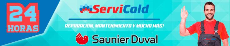 Reparacion de calderas Saunier Duval en Pinto