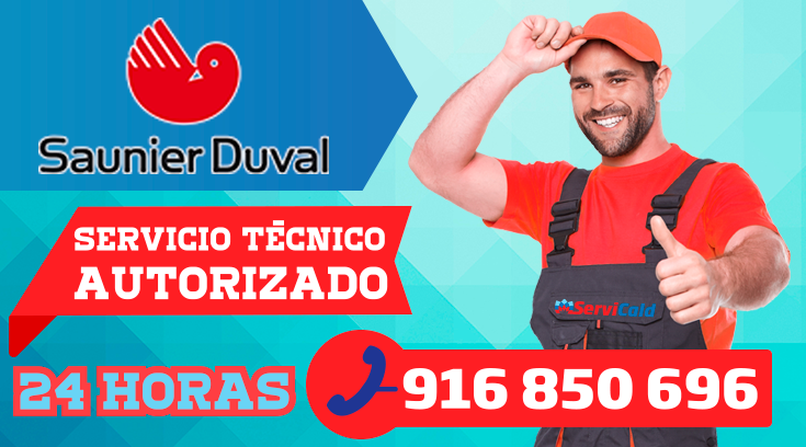 Servicio tecnico Saunier Duval en Pinto