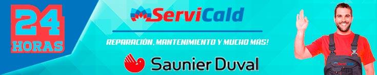 Reparacion de calderas Saunier Duval en Leganes