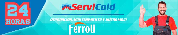 Reparación de calderas Ferroli en Pinto